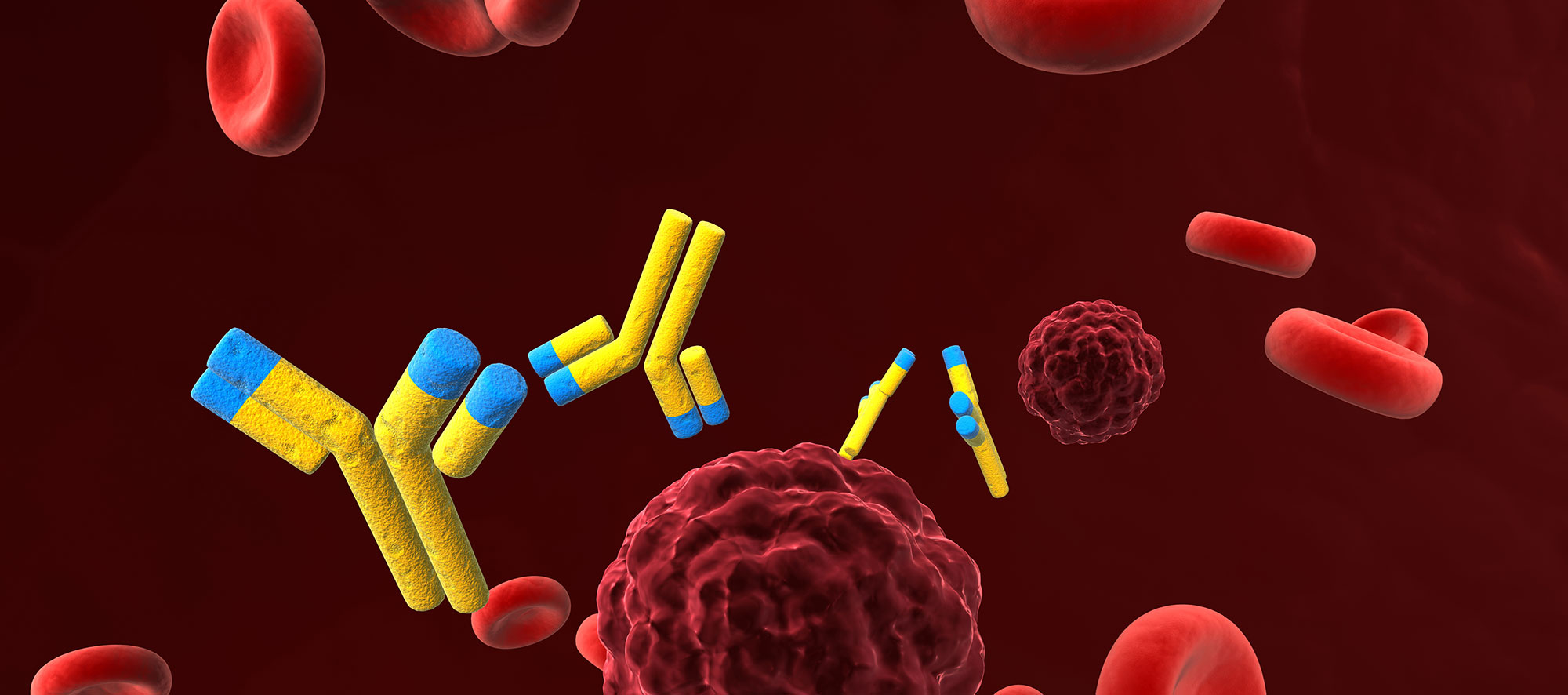 Antibody Background